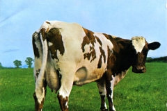 Pink-Floyd-Atom-Heart-Mother-Front